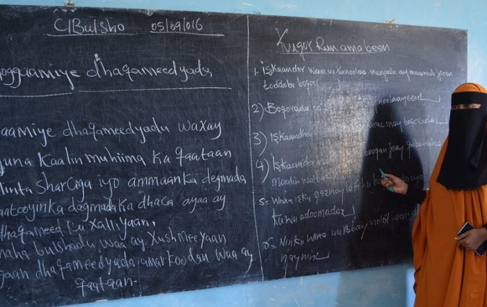 Farah Samiiro Habib, School of Professional Studies and Services, Somalia: Economic Empowerment of Out of School Girls through TVET